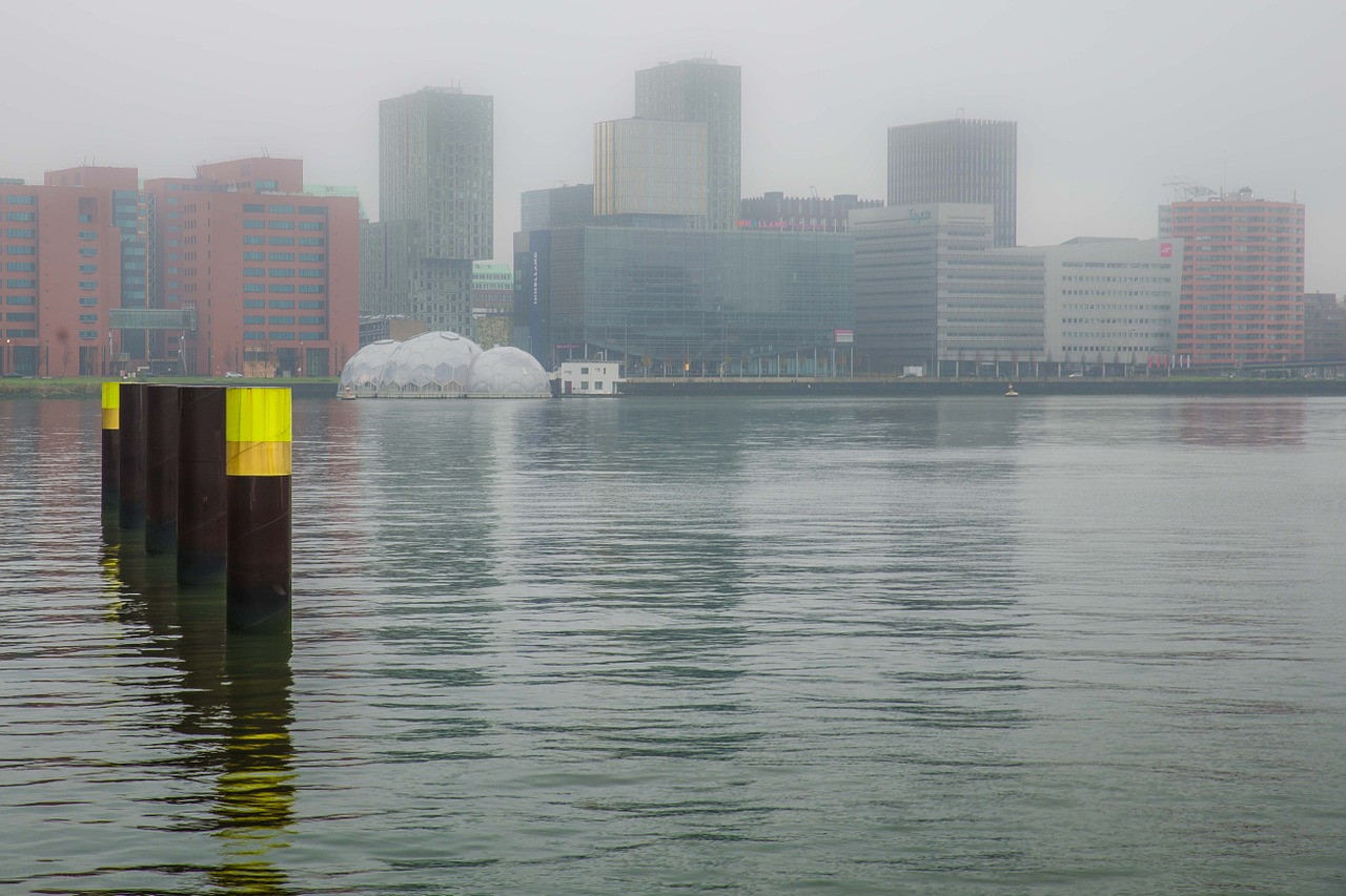 Rotterdammers in de bijstand